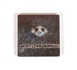 BW Icon Pin