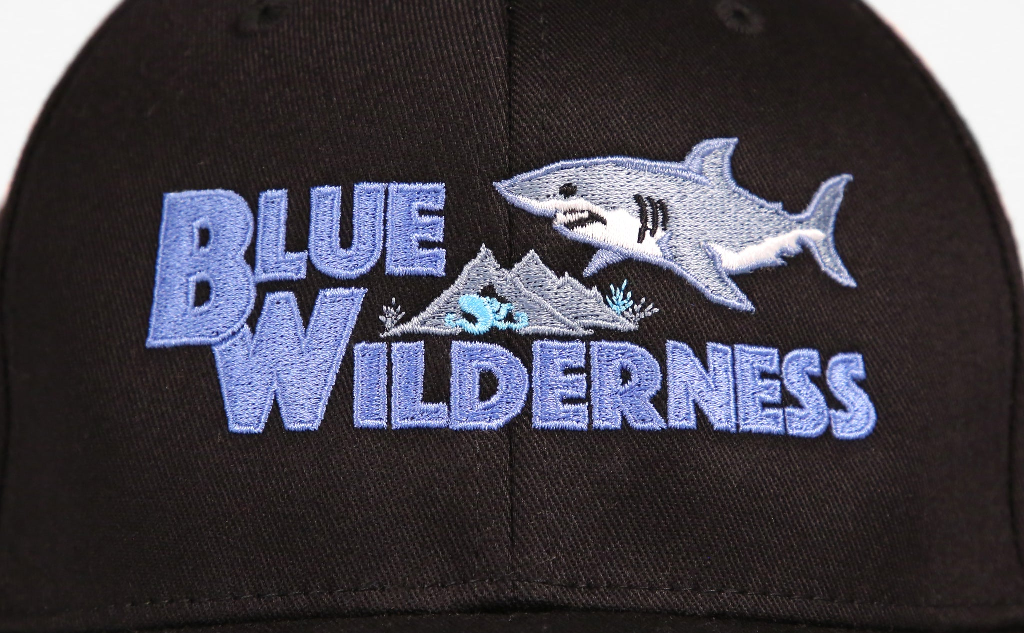 Blue Wilderness Flex Hat - Black