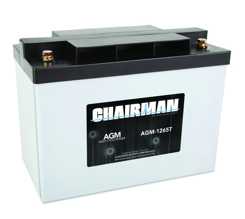Chairman AGM-1265T - 12v - 65AH Deep Cycle Battery
