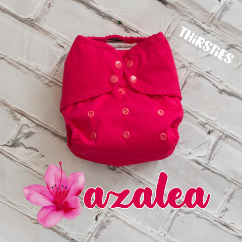 Image of Azalea cloth diaper by Thirsties Baby