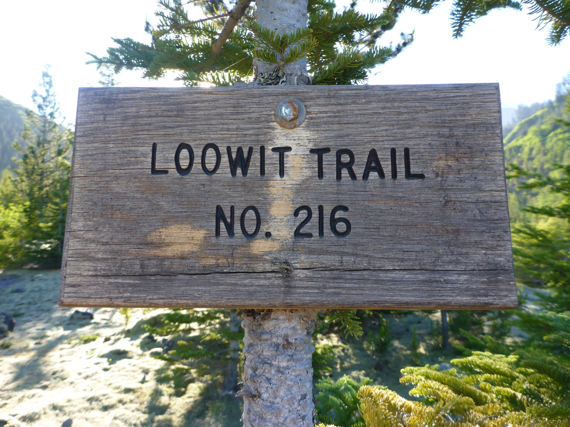 Your Guide to Hiking the Loowit Trail
