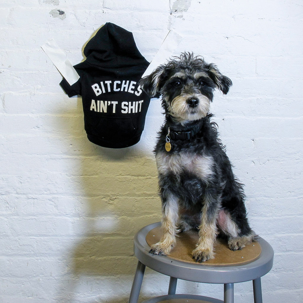 Bitches Ain't Shit Dog Sweatshirt - Fuck Shit Shop