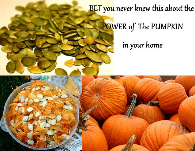 The Power of the Pumpkin and Its Seeds