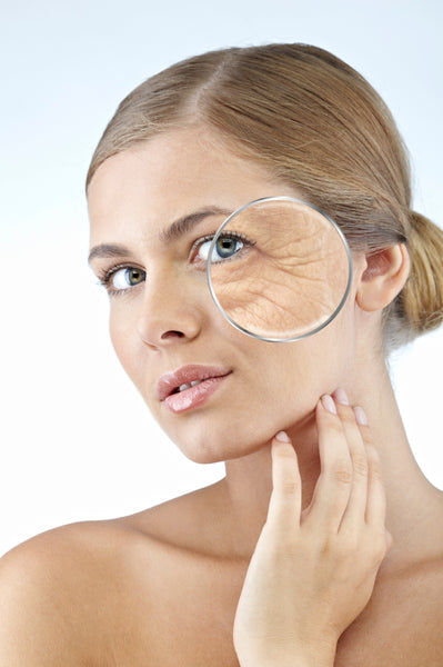 beauty aging skin elasticity