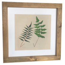 Fern Framed Canvas