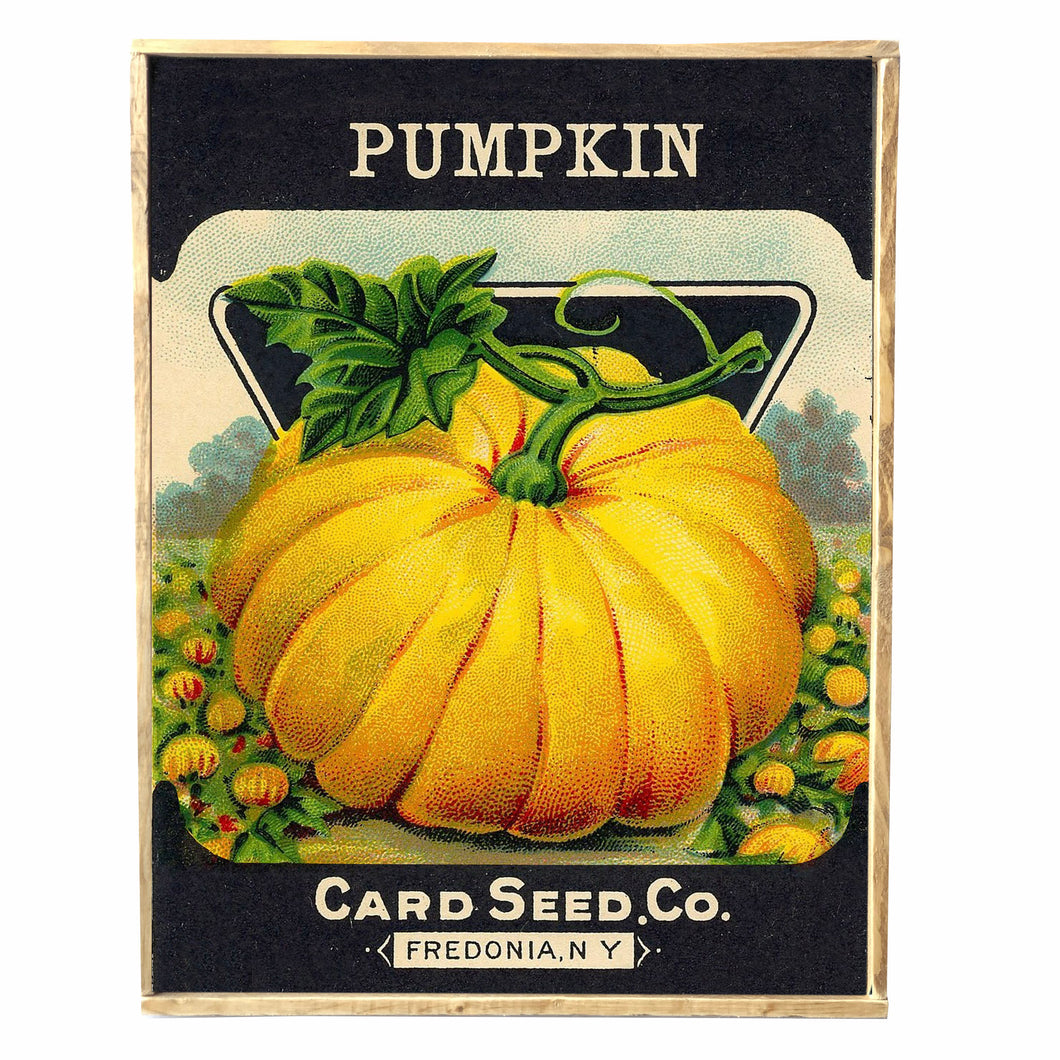 Pumpkin Seed Company \\ Harvest \\ Fall \\ Vintage Style Framed Print