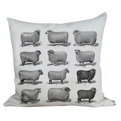 Sheep Farmhouse Pillow