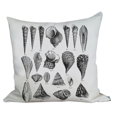 Vintage Seashell Pillow