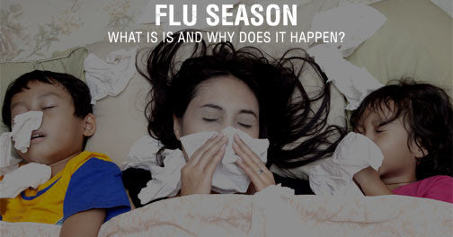Flu Season: What is It and Why Does it Happen?
