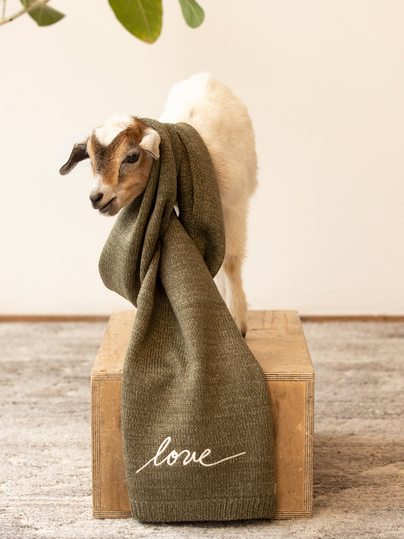 Love Knit Scarf