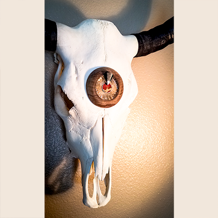 Cow Skull with Wood, Red Jasper, Granite & Flintknapping Glass