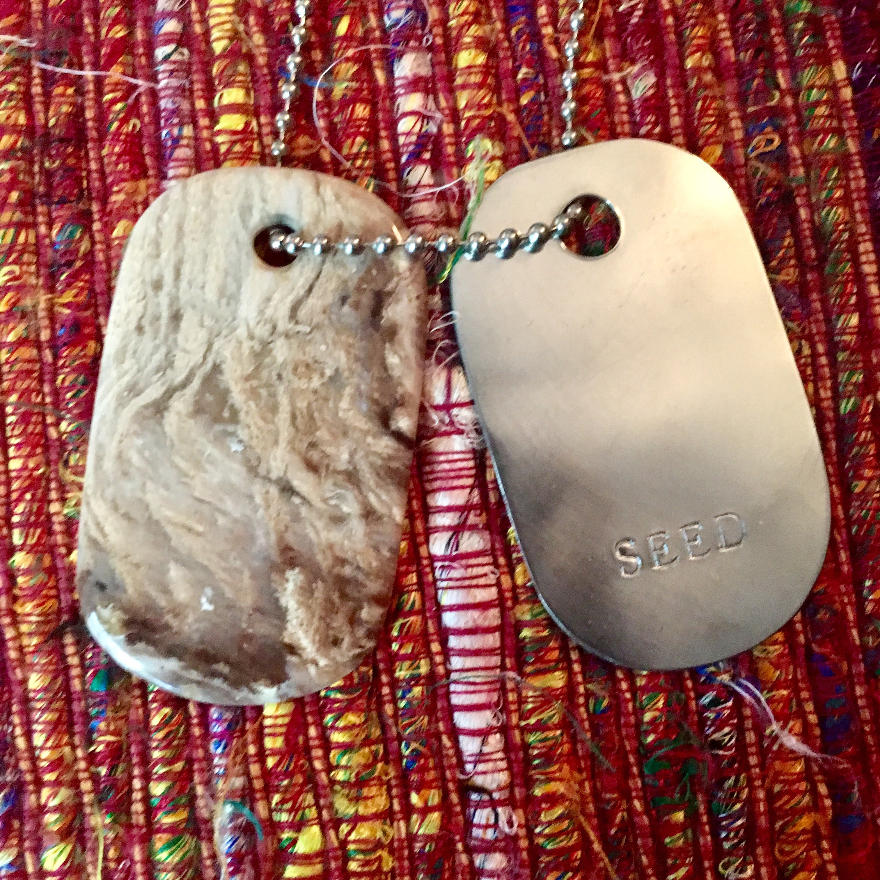 "00011 Talisman Petrified Wood and Sterling Silver ""SEED"" Goddess Tag Necklace"