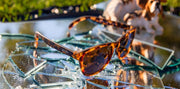 Goodr Sunglasses: Bosley's Bassett Hound Dreams (SKU: GOODR-BBHD)