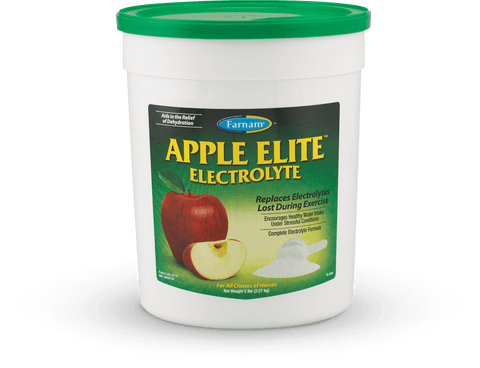 Elite Electrolyte for Horses