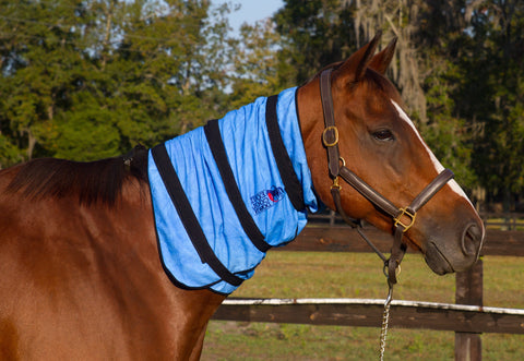 Equi Cool Down's Equine Neck Wrap