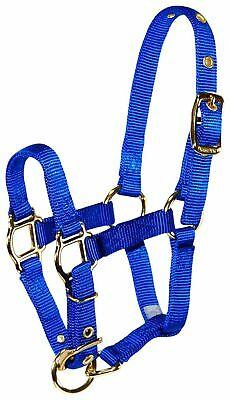 Hamilton Adjustable Nylon Halter No Snap