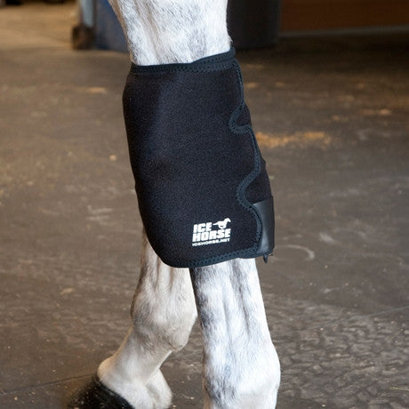 Ice Horse Knee Ice Wrap - Pair