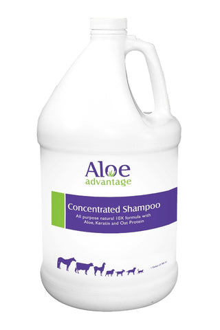 Alvoe Advantage Concentrated Shampoo
