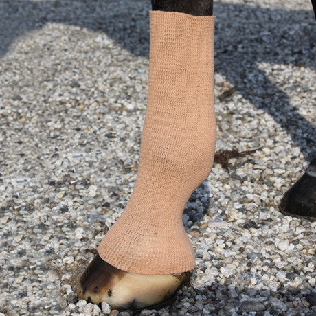 EquiFit Horse GelSox