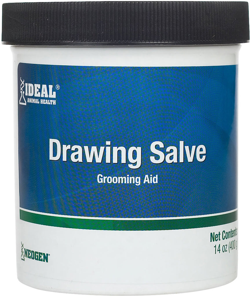 Ideal Drawing Salve