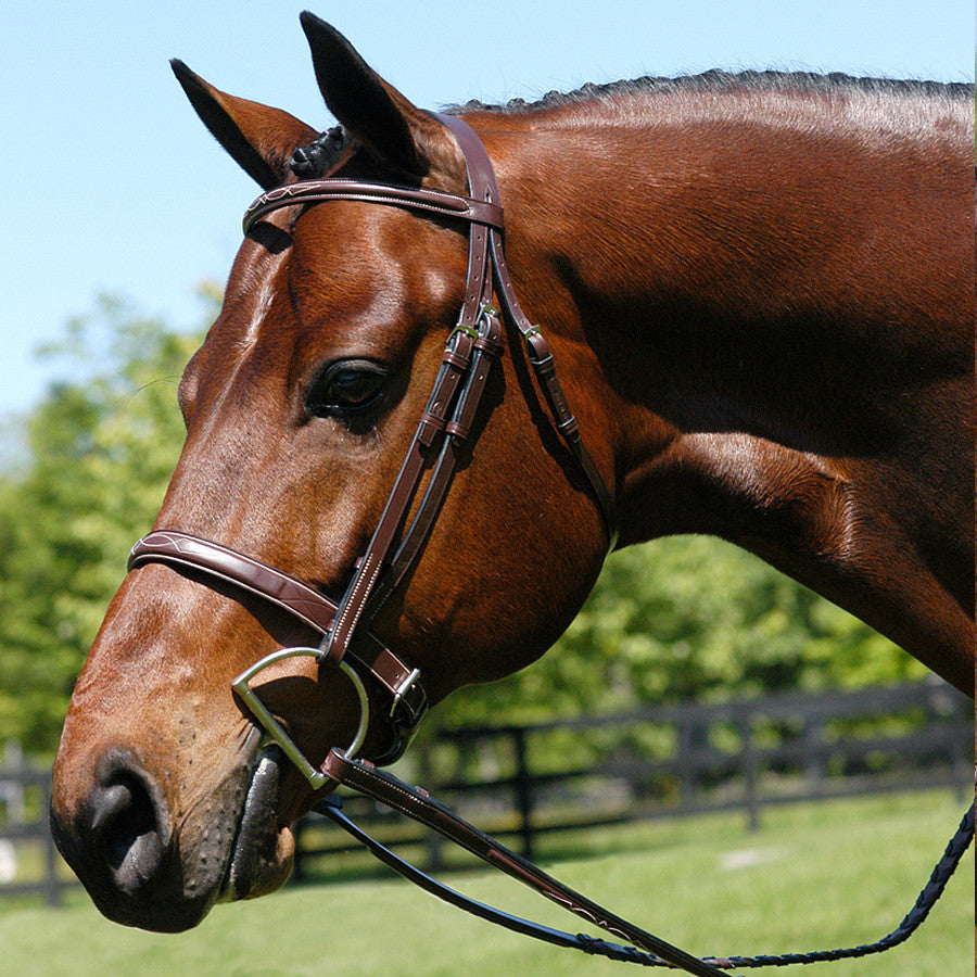 Heritage Wide Caveson Hunter Bridle