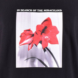 In Search Of The Miraculous Tee - Blue & Gold Boardshop