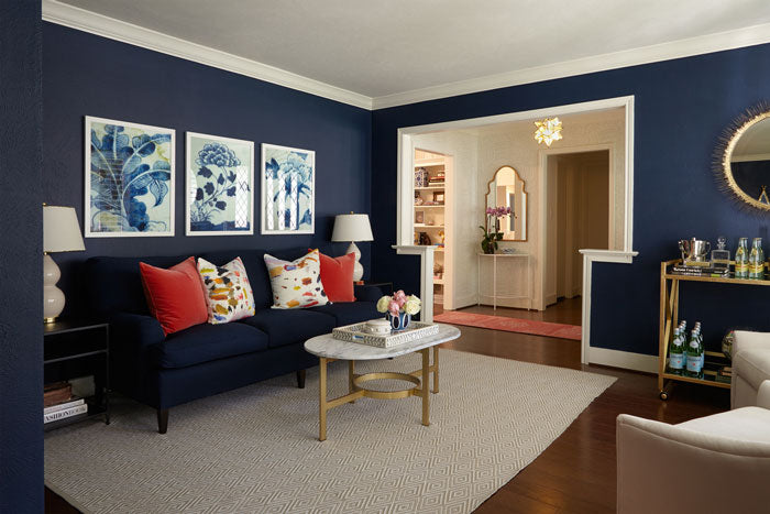 navy sofa and navy walls with red and multi colored pillows - interior designer Maddie Hughes