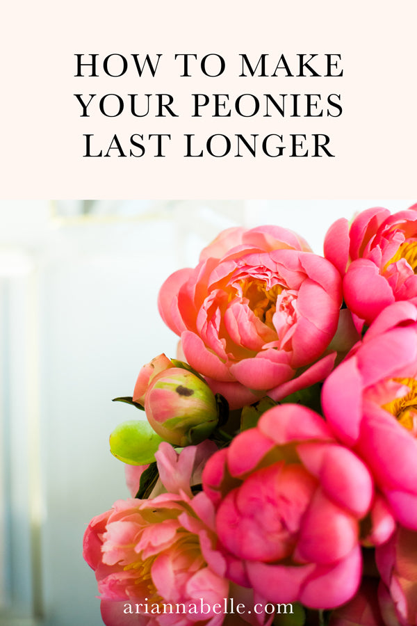 How to Keep Cut Peony Flowers Fresh Longer | Arianna Belle Blog