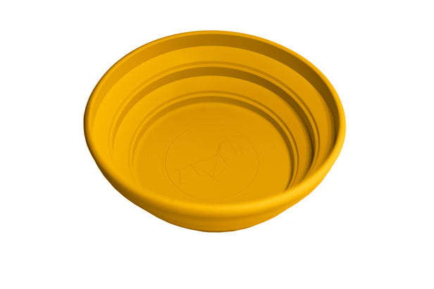 Collapsible Bowl