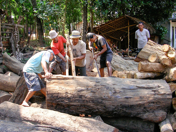Salvaging a large log in Indonesia