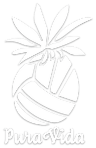 Pura Vida Volleyball Pineapple Decal Vinyl