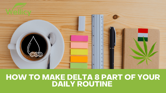 How to Make Delta 8 Part of Your Daily Routine