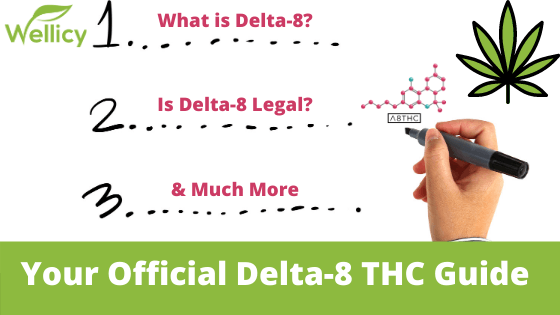 What is Delta-8 THC? Delta-8 THC Guide