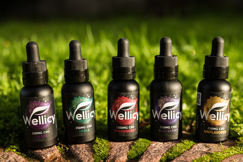Wellicy CBD Oil Tinctures for Yoga