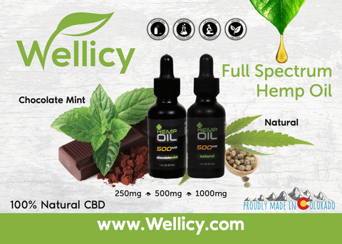 Wellicy CBD Oil Tincture