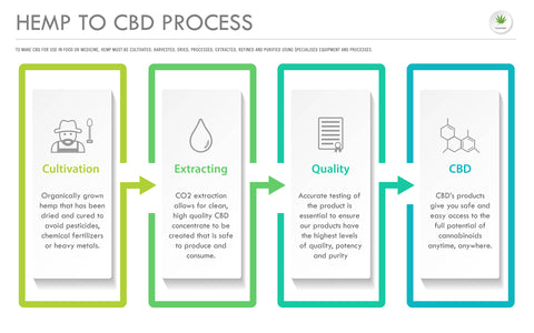 How CBD is Extracted from Hemp