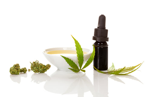 What Ingredients to Look for in Pet CBD Products