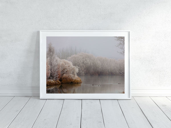 'Kellands Pond Hoar Frost' Photographic Print 2