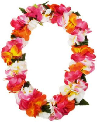 Hawaii Flower Lei Plumeria (multicolor)
