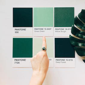 The official colour for 2017 - Greenery