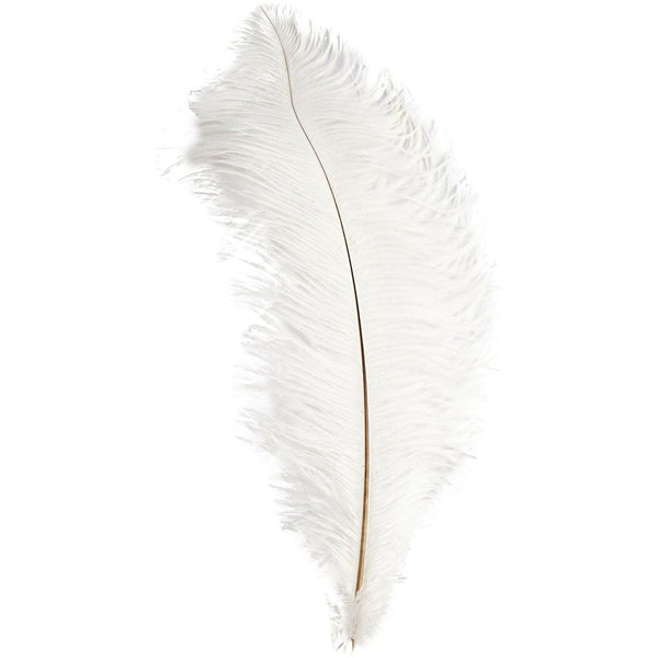"Ostrich Wing Feather Plumes 40-45cm (16-18"") - White"