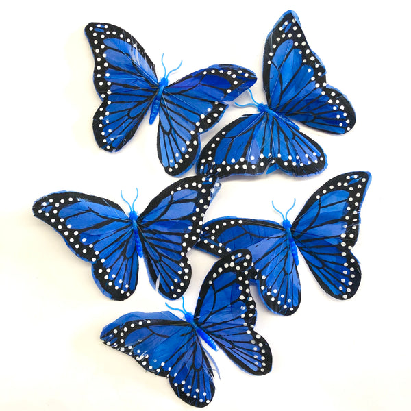 Feather Butterflies Style 5 x 5 Pack - Royal Blue