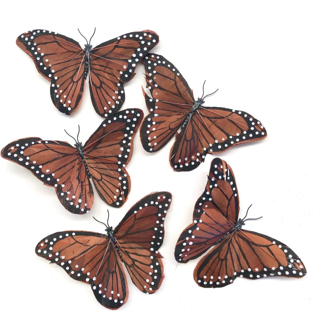 Feather Butterflies Style 5 x 5 Pack - Brown