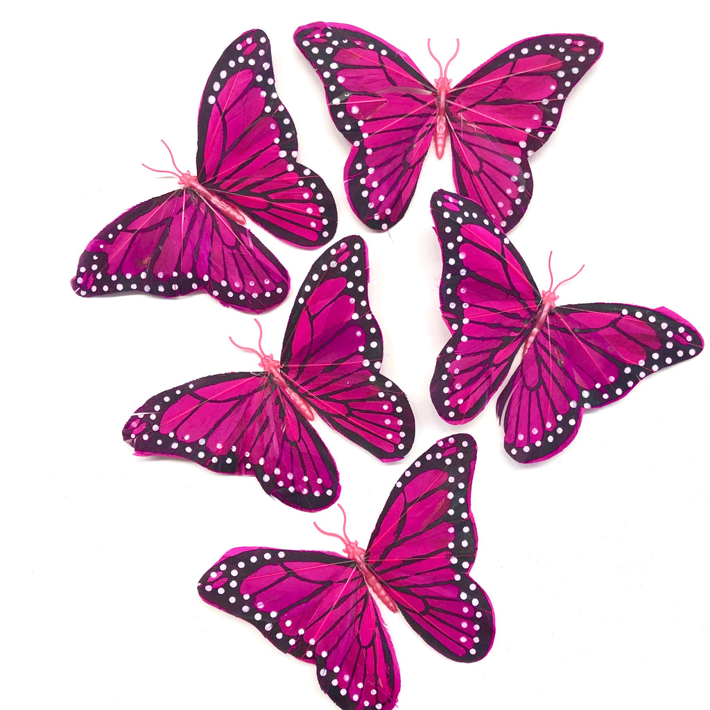 Feather Butterflies Style 5 x 5 Pack - Magenta