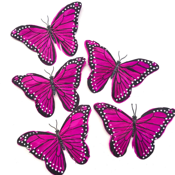 Feather Butterflies Style 5 x 5 Pack - Cerise