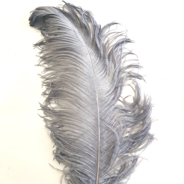 "Ostrich Wing Feather Plumes 50-55cm (20-22"") - Grey Silver"