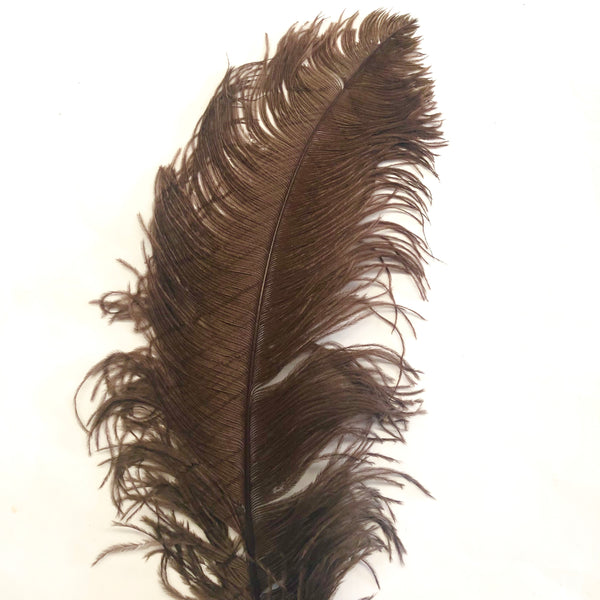 "Ostrich Wing Feather Plumes 50-55cm (20-22"") - Chocolate Brown"
