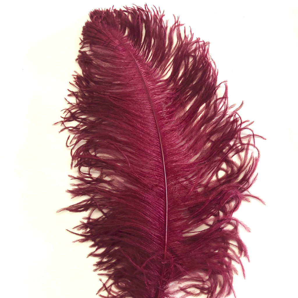 "Ostrich Wing Feather Plumes 60-65cm (24-26"") - Burgundy"