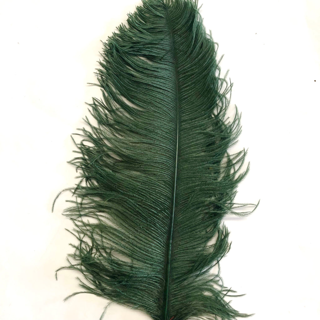 "Ostrich Wing Feather Plumes 50-55cm (20-22"") - Forest Green ((SECONDS))"