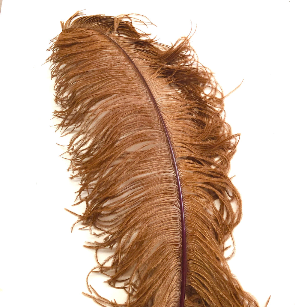 "Ostrich Wing Feather Plumes 50-55cm (20-22"") - Rust Brown ((SECONDS))"